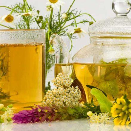 Cuáles son las propiedades de la manzanilla y por qué debes consumirla